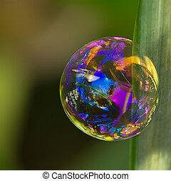 bolha sabão, com, reflexões