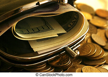 bolsa, com, dinheiro