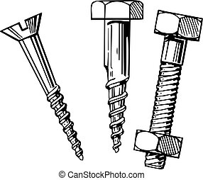 Two screws and bolt on white background