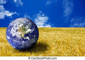 bolygó földdel feltölt, alatt, egy, sárga terep