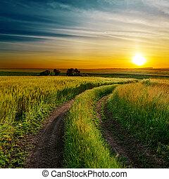 bom, primavera, campo, verde, sujo, pôr do sol, estrada