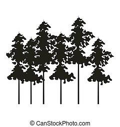 bomen, landscape, natuur