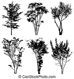 bomen, silhouettes