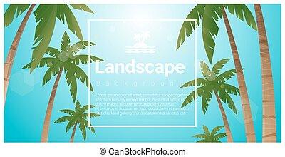 bomen, tropische , 3, palm, achtergrond, strand, landscape