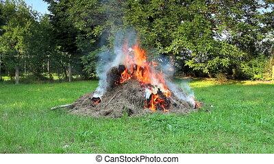bon feu, herbe, bois