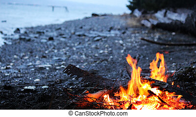 Wood fire burning with beach and sand in background