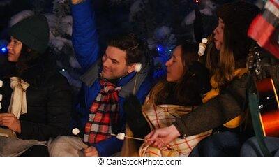 bon, groupe, hiver, séance, prendre, avoir, jeune, bonfire., time., femme, forêt, amis, selfie