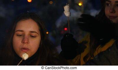 bon, groupe, hiver, séance, time., forêt, manger, amis, avoir, feu, marshmallow.