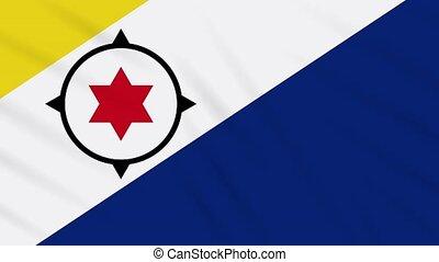 Bonaire flag waving cloth background, loop