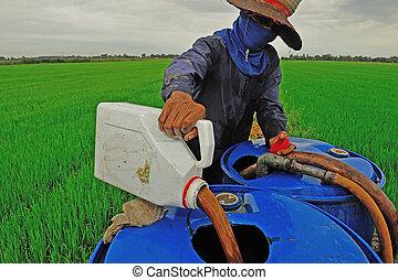 bonde, blandande, insektsmedel, på, den, risgryn gärde