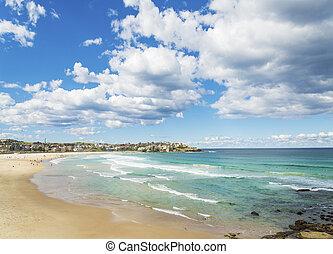 bondi, 浜, 中に, シドニー, オーストラリア