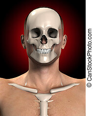Bone Face - Mans body with the skull and ribs sticking out.