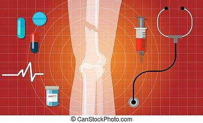 bone fracture broken legs human anatomy x ray medical treatment illustration icon