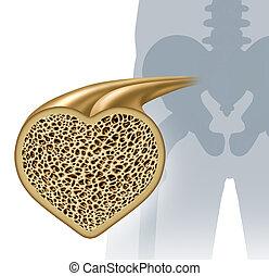 Bone Health - Bone health and osteoperosis prevention...