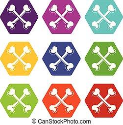 Bone icons set 9 vector - Bone icons 9 set coloful isolated ...
