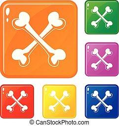 Bone icons set vector color - Bone icons set collection ...