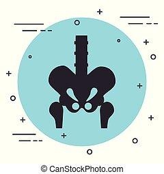 Bone structure of the hip vector illustration design