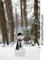 boneco neve, congelação