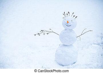 boneco neve, estar sorrindo, neve