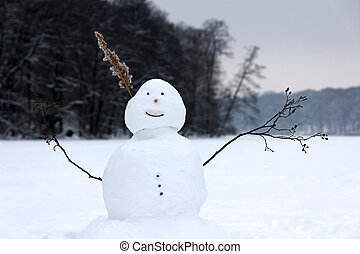 boneco neve, lago congelado, feliz