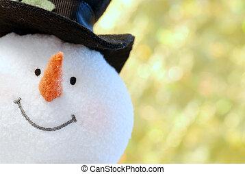 boneco neve, rosto, cima