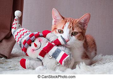 boneco neve, siting, vermelho, gato