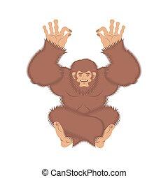 boneco neve, vetorial, cognition., yoga., ilustração, yogi., yeti, abominable, bigfoot, relaxamento