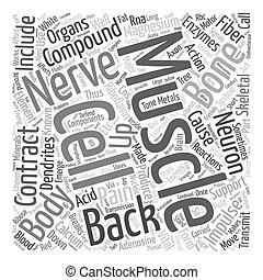 Bones and Back Pain text background wordcloud concept