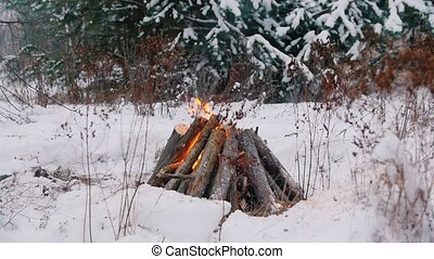 Bonfire. A person kindling a fire in the winter forest. Slow...
