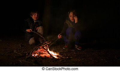 Bonfire at Night - Two cute brothers enjoying a bonfire in ...