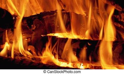 Bonfire Burning at Night. Campfire from Branches Burns at ...