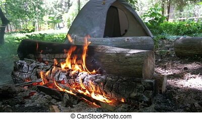 Bonfire Burns in the Camping Amidst a Tent and Logs in the ...