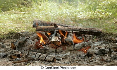 Bonfire in the forest at the day. Closeup shot