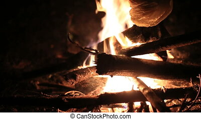 bonfire in the woods - Night bonfire in the woods