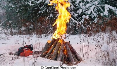 Bonfire. Kindled fire in the winter forest. A chainsaw lying...