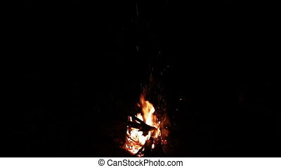 Bonfire night in the woods, and red-hot coal on the ground and a lot of sparks from the fire.