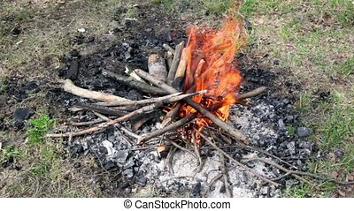 Bonfire of the branches burns on grass, at sunny summer day