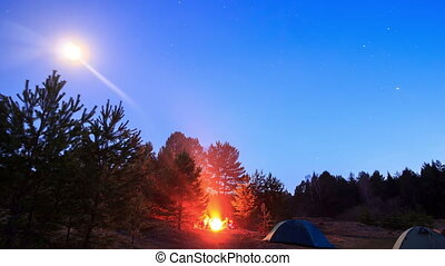 Bonfire on a moonlit night. Time Lapse