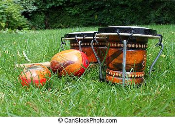 bongos, capim, maracas
