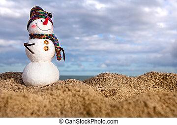 bonhomme de neige, sourire, plage, mer