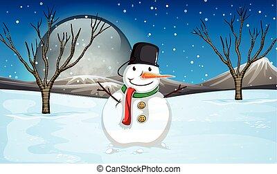 bonhomme de neige, terrestre, nuit