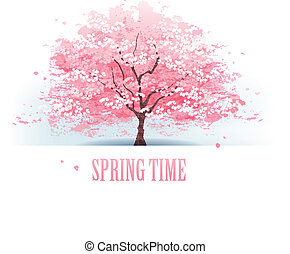 bonito, árvore cereja, flor