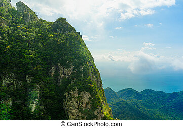 bonito, árvore, coberto, montanhas, em, langkawi, com, nevoeiro, rolando