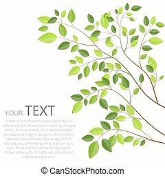 bonito, árvore, ilustração, vetorial, experiência verde, branca