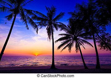 bonito, árvores, sobre, oceânicos, tropicais, pôr do sol, paraisos, palma, praia, pôr do sol