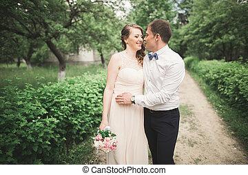 bonito, abraço, par, casório, park., beijo, um ao outro