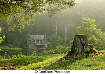 bonito, antigas, watermill, predios, em, luxuriante, floresta, ligado, orvalhoso, manhã