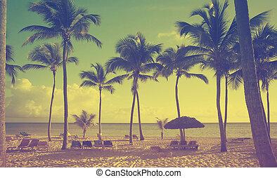 bonito, arte, litoral, retro, fundo, vista