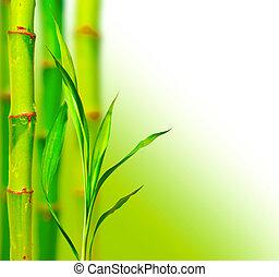 bonito, bambu, fundo