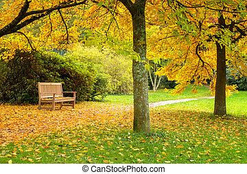 bonito, bancos, folhas, parque, outono, caído